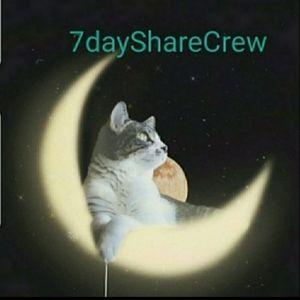 7 dayShare Crew